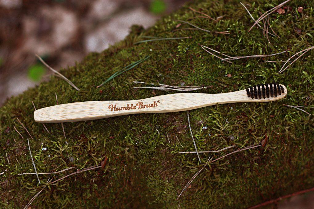 The humble brush 2000 2